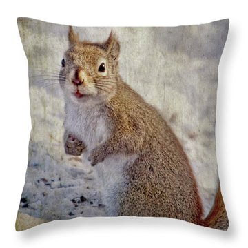 Spring Squirrel Throw Pillow