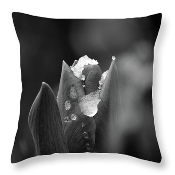 Spring Start Throw Pillow