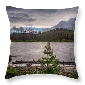 Throw Pillow featuring the photograph Spring Storm At Round Lake by Cat Connor