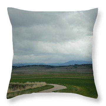 Spring Storm Throw Pillow