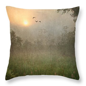 Spring Sunrise In The Valley Throw Pillow