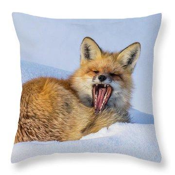 Spring Sunshine Throw Pillow