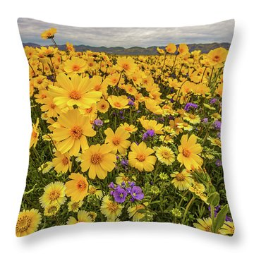 Throw Pillow featuring the photograph Spring Super Bloom by Peter Tellone