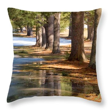 Spring Thaw  Throw Pillow by Betty  Pauwels