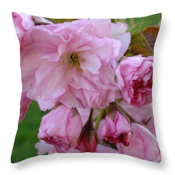 Spring Time Blossoms Throw Pillow