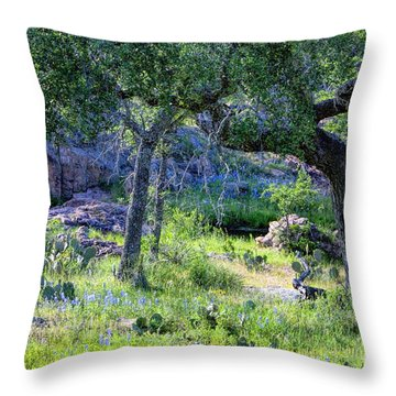 Spring Time In Texas Throw Pillow by Linda Phelps