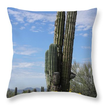 Spring Time In Tucson Throw Pillow