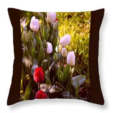Throw Pillow featuring the photograph Spring Time Tulips by Susanne Van Hulst