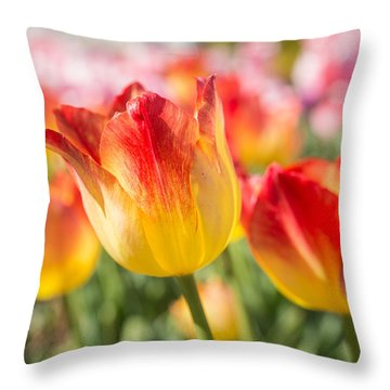 Spring Touches My Soul Throw Pillow