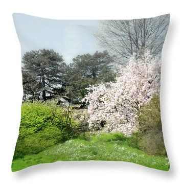 Throw Pillow featuring the photograph Spring Treasures by Diana Angstadt