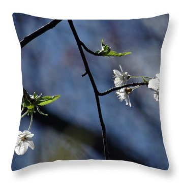 Spring Tree Blossoms 2 Throw Pillow by Mikki Cucuzzo