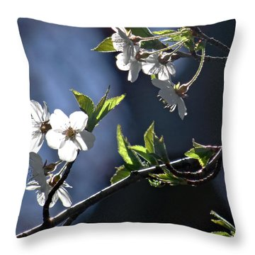 Spring Tree Blossoms 3 Throw Pillow by Mikki Cucuzzo