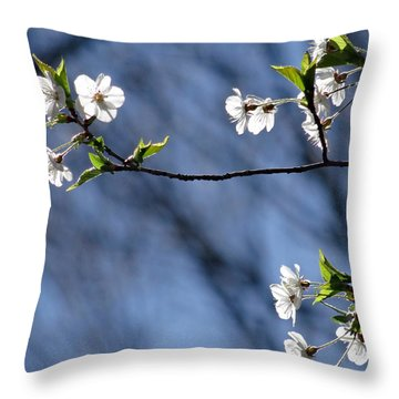 Spring Tree Blossoms Throw Pillow by Mikki Cucuzzo