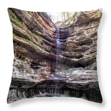 Spring Trickling In Throw Pillow by Darren Robinson