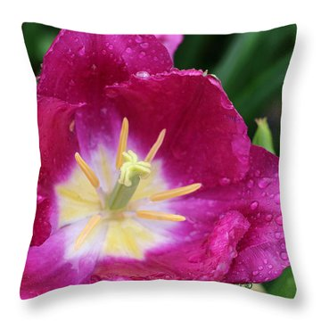 Spring Tulips 47 Throw Pillow by Pamela Critchlow