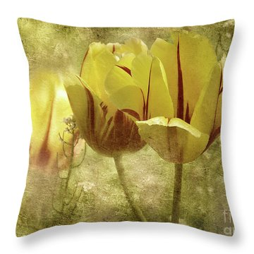 Throw Pillow featuring the photograph Spring Tulips by Elaine Manley