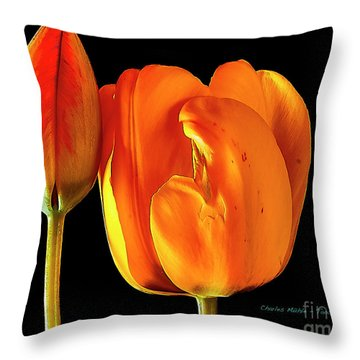 Spring Tulips V Throw Pillow