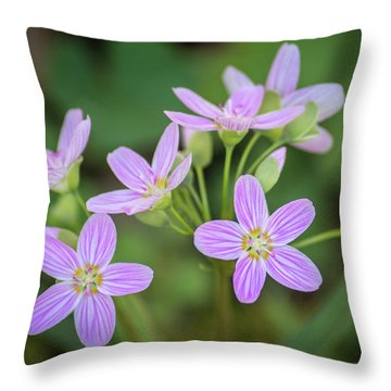 Throw Pillow featuring the photograph Spring Vibe by Bill Pevlor