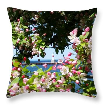 Spring View Throw Pillow