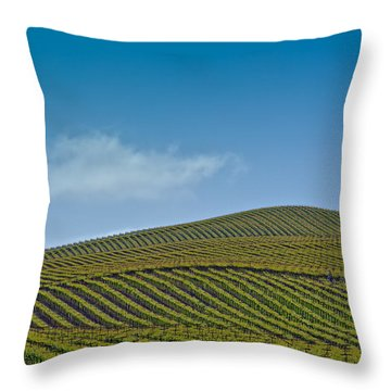 Spring Vineyard Throw Pillow