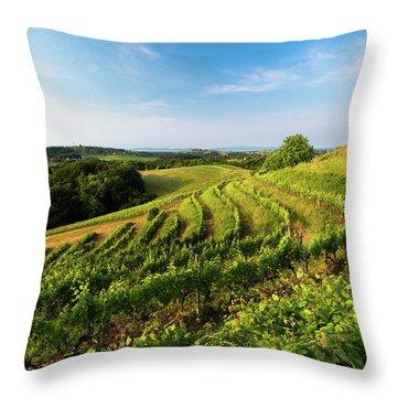 Spring Vinyard Throw Pillow