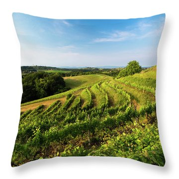 Spring Vinyard Throw Pillow