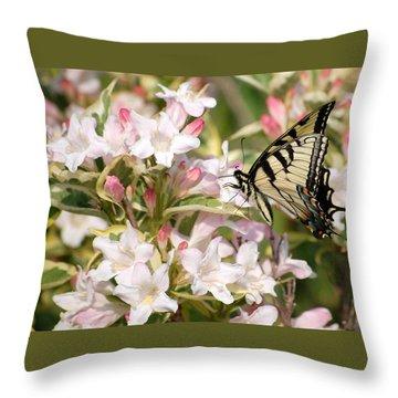 Spring Visit Throw Pillow