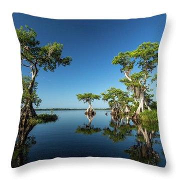 Spring Vistas At Lake Disston Throw Pillow