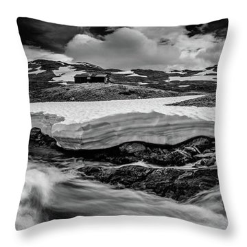 Throw Pillow featuring the photograph Spring Waters by Dmytro Korol