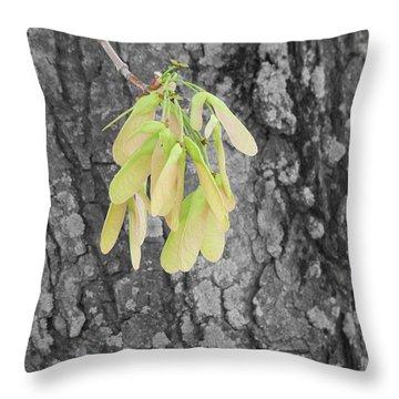 Spring Whirligig Throw Pillow