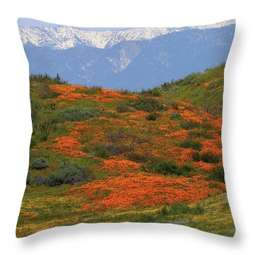 Spring Wildflower Display At Diamond Lake In California Throw Pillow by Jetson Nguyen