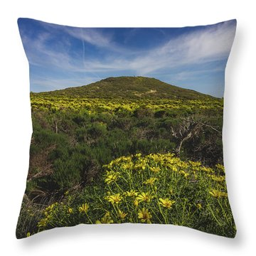 Spring Wildflowers Blooming In Malibu Throw Pillow