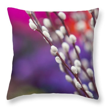 Spring Willow Branch Of White Furry Catkins Throw Pillow