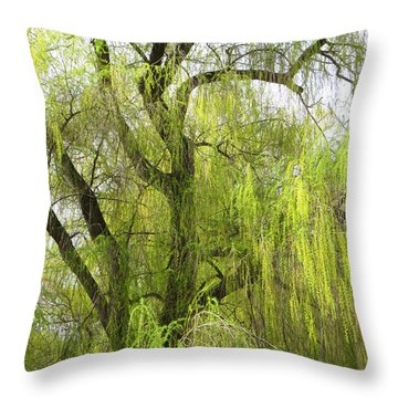 Spring Willow Throw Pillow