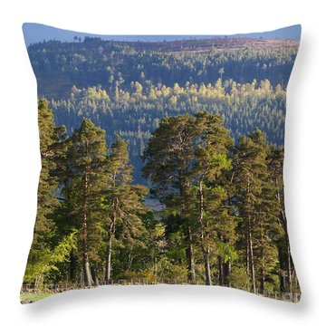 Spring Woodland Throw Pillow