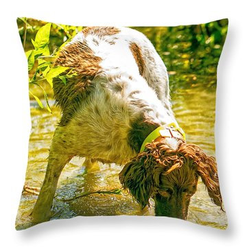 Springer Spaniel Field Throw Pillow by Constantine Gregory