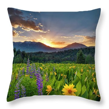 Spring's Delight Throw Pillow by Leland D Howard