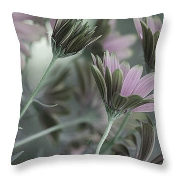 Spring's Glory Throw Pillow