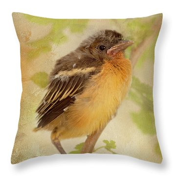 Spring's Sweet Song Throw Pillow