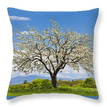 Springtime Apple Tree Throw Pillow