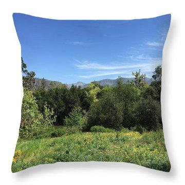 Springtime At Descanso Gardens Throw Pillow by Jan Cipolla