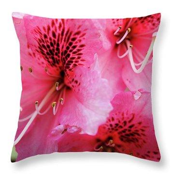 Springtime Azalea Throw Pillow