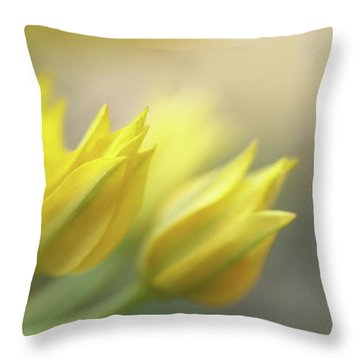 The Dreamtime  Throw Pillow