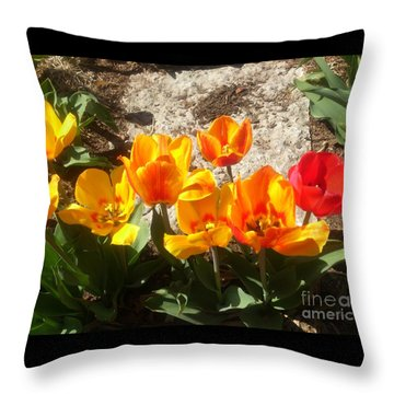 Springtime Flowers Throw Pillow