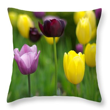Springtime Glory Throw Pillow by Linda Mishler