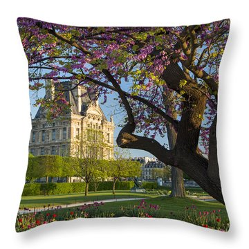 Throw Pillow featuring the photograph Springtime In Paris by Brian Jannsen