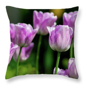Springtime In Stratford Throw Pillow