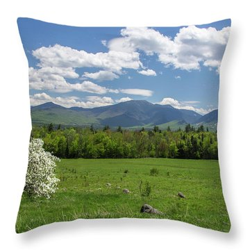 Springtime In Sugar Hill Throw Pillow