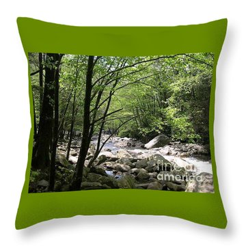 Springtime In The Smoky Mountains Throw Pillow by Barb Montanye Meseroll