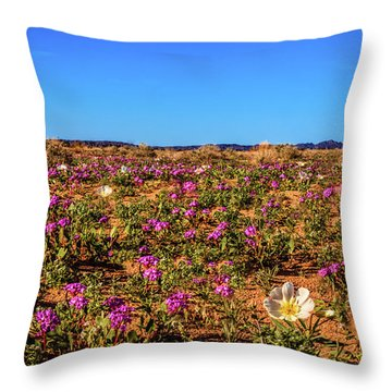 Throw Pillow featuring the photograph Springtime In The Sonoran Desert by Robert Bales